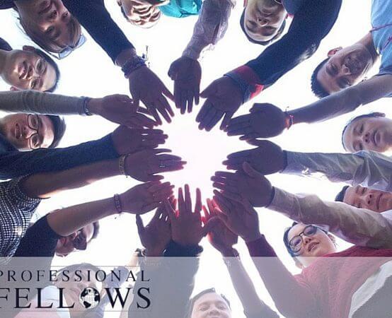 YSEALI Professional Fellows